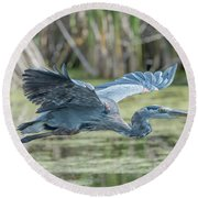 Gliding Over The Wetlands... Round Beach Towel
