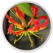 Gloriosa Lily Round Beach Towel