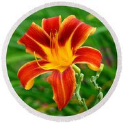 Round Beach Towel featuring the photograph Glorious Daylily by Sue Melvin
