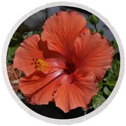 Glorious Hibiscus Round Beach Towel