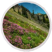 Glorious Mountain Heather Round Beach Towel