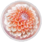 Glorious Salmon Dahlia Round Beach Towel