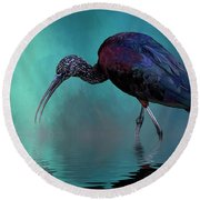 Glossy Ibis Looking For Breakfast Round Beach Towel by Cyndy Doty
