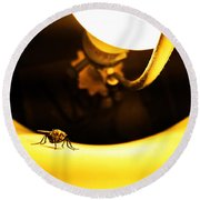 Round Beach Towel featuring the photograph Glow Fly by Robert Knight