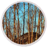 Round Beach Towel featuring the photograph Glow Of The Setting Sun by Will Borden