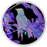 Round Beach Towel featuring the photograph Glowing Cedar Waxwing by Smilin Eyes  Treasures