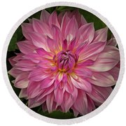 Glowing Dahlia Round Beach Towel