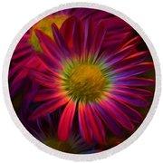 Glowing Eye Of Flower Round Beach Towel by Lilia D