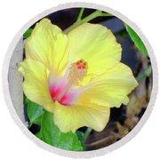 Glowing Hibiscus Flower Round Beach Towel