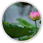 Glowing Lotus Lily Round Beach Towel