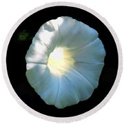 Glowing Morning Glory Round Beach Towel