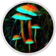 Round Beach Towel featuring the photograph Glowing Mushrooms by Yulia Kazansky