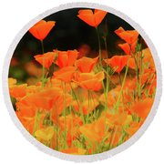 Glowing Poppies Round Beach Towel