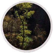 Glowing Tree At Zion Round Beach Towel