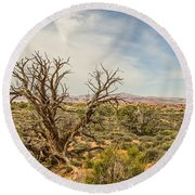 Gnarled Juniper Tree In Arches Round Beach Towel