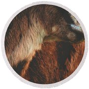 Goat Love Round Beach Towel