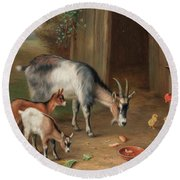 Goats And Chickens In A Farmyard Round Beach Towel