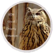 Round Beach Towel featuring the photograph God Equals Owl by Debby Pueschel