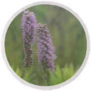 Round Beach Towel featuring the photograph Godfrey's Blazing Star by Maria Urso