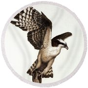 Going Fishin' Osprey Round Beach Towel by Pat Erickson