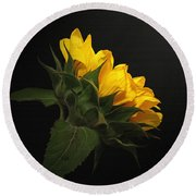 Round Beach Towel featuring the photograph Golden Beauty by Judy Vincent