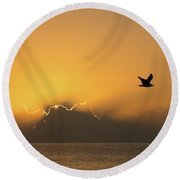 Golden Bird Sunrise Delray Beach Florida Round Beach Towel