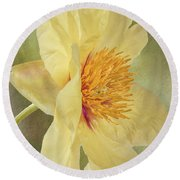 Golden Bowl Tree Peony Bloom - Profile Round Beach Towel
