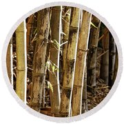Round Beach Towel featuring the photograph Golden Canes by Linda Lees