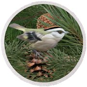 Golden Crowned Kinglet Round Beach Towel