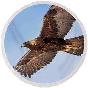 Golden Eagle Flight Round Beach Towel