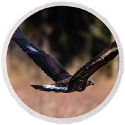 Round Beach Towel featuring the photograph Golden Eagle Flying by Torbjorn Swenelius