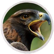 Golden Eagle - Raptor Calling Round Beach Towel