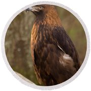Round Beach Towel featuring the photograph Golden Eagle Resting On A Branch by Chris Flees