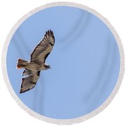 Golden Eagle Round Beach Towel
