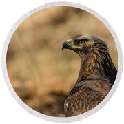 Golden Eagle Round Beach Towel by Torbjorn Swenelius