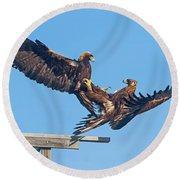 Golden Eagle Courtship Round Beach Towel