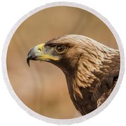 Golden Eagle's Portrait Round Beach Towel by Torbjorn Swenelius