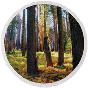 Golden Forest Bed Round Beach Towel