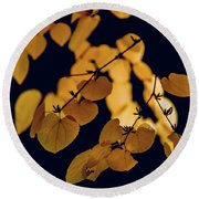Golden Round Beach Towel