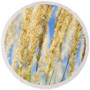 Round Beach Towel featuring the photograph Golden Grains by Christi Kraft