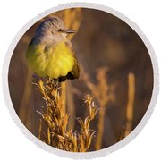 Golden Hour Flycatcher Round Beach Towel
