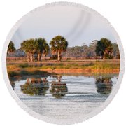Golden Light On The St. Marks Marshes Round Beach Towel