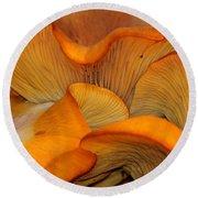 Golden Mushroom Abstract Round Beach Towel