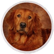 Round Beach Towel featuring the photograph Golden Retriever by Greg Mimbs
