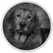 Golden Retriever In Black And White Round Beach Towel by Greg Mimbs