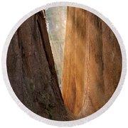 Golden Sequoia Round Beach Towel