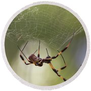 Golden-silk Spider Round Beach Towel