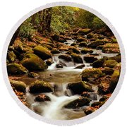 Round Beach Towel featuring the photograph Golden Stream In The Great Smoky Mountains by Debbie Green