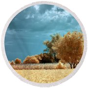 Round Beach Towel featuring the photograph Golden Summerscape by Helga Novelli