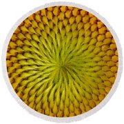 Round Beach Towel featuring the photograph Golden Sunflower Eye by Chris Berry